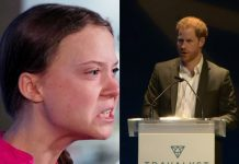 Greta Thunberg i Harry/Fot.: PAP/print screen z YouTube/The Royal Family Channel